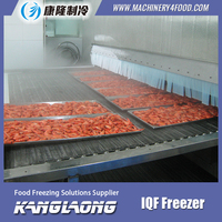 High Efficiency Fish Fillet fast freezing machine