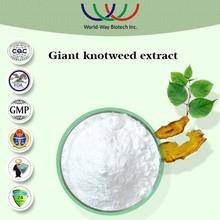 China and Japan traditional pain killer polygonum cuspidatum extract /polygonum cuspidatum root extract resveratrol 98%