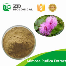 100% Natural Sensitive Plant Extract/Mimosa Tenuiflora P.E./mimosa hostilis