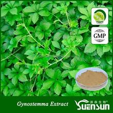 high quality Gypenoside Gynostemma Plant Extract gynostemma extract