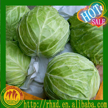 2015 fresh without putrefaction cabbages on sale