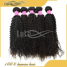 wholesale grade 5a 100% unprocessed brazilian wet and curly hair extension