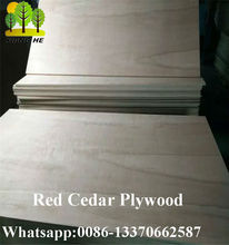 Red Cedar Wood Plywood Poplar Core E1 Glue
