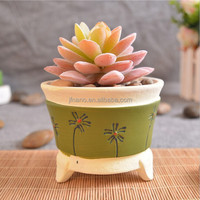 Home decoration hand painted mini terracotta pot
