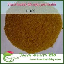 Yellow Corn Animal Feed/DDGS Grains Animal Feeding Price