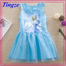 2015 girl's summer cinderella dress cosplay costume provided by china supplier HZC23