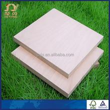 Plywood Doors Designs By Waterproof Plywood