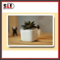 2015 new design mini decorative ceramic flower pot for sale