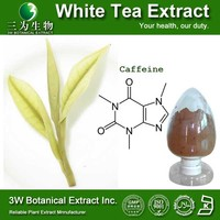Food Grade Supplement White Tea Extract Powder Instant White Tea Powder Natural White Tea Extract