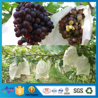 OEM Disposable Fruit Protection Bag Dot Nonwoven Packing Bag Heat Seel Fruit Cover Bag
