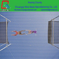 Factory Manufacture construction scaffold safety net / safety netting / swimming pool cover net