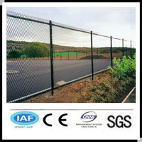 Wholesale alibaba China CE&ISO certificated expanded metal gates(pro manufacturer)