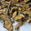 hu zhang chinese knotweed herb