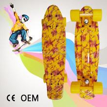 Chinese fish ripstick skateboard