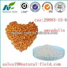 polvo de semilla de albaricoque para anti-cáncer