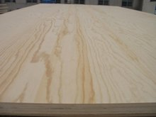 MR ceo friendly bond glue adhesive combi core pine veneer plywood for Indoor interior home decoration