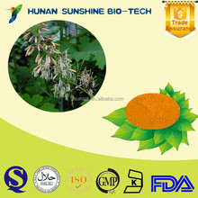 natural plant extract Pink Plumepoppy Fruit Extract /Macleaya Cordata Extract /Bocconia Cordata Extract