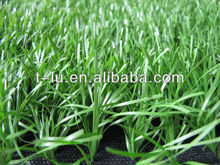 Monofilament Artificial Turf for Football or Soccer, monofilament yarn,