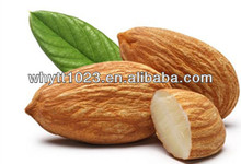 100% Natural de vitamina b17, Bitter amêndoa amigdalina extrato 98%