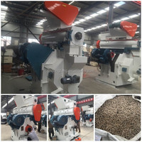 Top supplier hard wood pellet mill machine from China