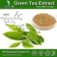 Zenergreen Super Green Tea Extract Green Tea Polyphenols 98% Green Tea Extract Supplement
