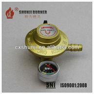 LPG Cylinder Regulator With Meter, LPG Gas Regulator With Gauge, Gas Regulator For Home Cook Use