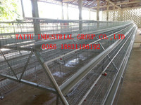 TAIYU low disease and death rate A type poultry cage for layer