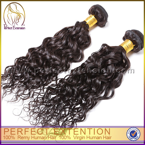Curly Machine Weft Indian Hair 3