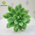Artificial plástico plantas suculentas por mayor para decoración de la pared