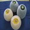 High quality colorful EPE foam net for fruit , vegetable , rose, wine bottle