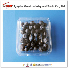 Disposable Feature Food Use Plastic Fruit Container for Berry Packing