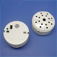 Small plastic sound box for toy ROSH material press button custom voice box