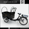cargo electric vehicle Denmark BRI-C01 double- wheel tricycle
