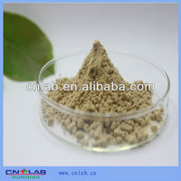 GMP,ISO,KOSHER Certified Fucus Vesiculosus Extract/Fucoidan 20%~98%