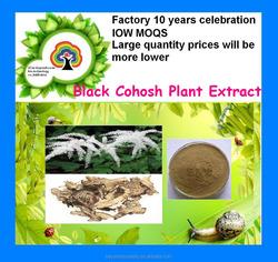 Black Cohosh Plant Extract10:1-20:1