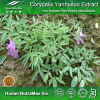 Corydalis Extract, Corydalis Extract Powder, Corydalis Powder