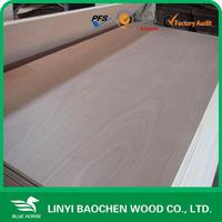 16mm Bintangor /okoume plywood board /panel