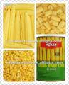 de alta calidad en lata de crema de maíz en salmuera