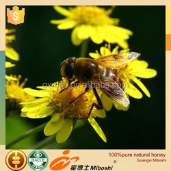 professional supply 100%pure food high quality honey