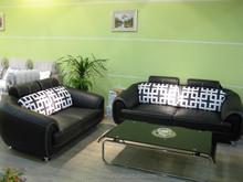 2015 fashion design leisure leather sofa