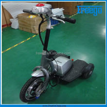 Li-Lion Battery Accept You Any Logo 3 Wheel Electric Scooter
