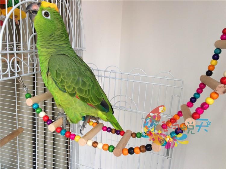 Сделать лестницу для попугая своими руками