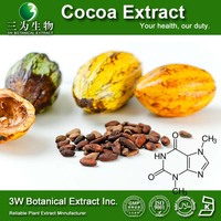 High Quality Cocoa Powder Alkalizational Cocoa Powder Cocoa Powder Manufacturer
