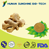 Detoxication Brownish yellow powder Ginger Extract