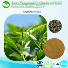 natural green tea extract ,tea polyphenol,catechin