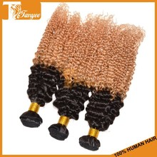 Top Selling 5A Remy Indian Two Tone 1b/27 Afro Kinky Curly Human Hair