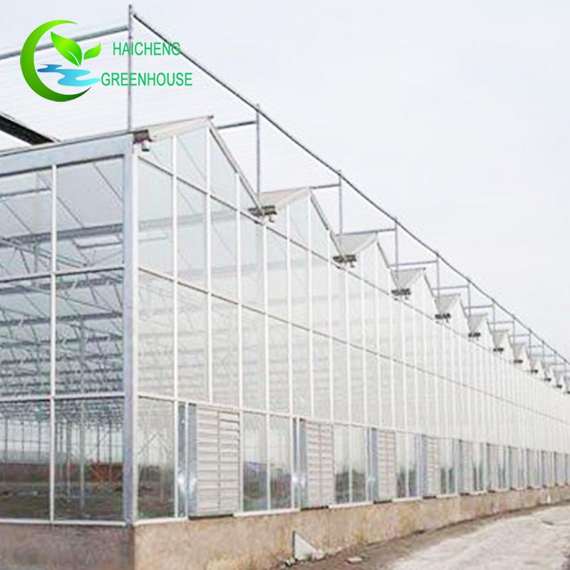 Хорошая цена огурец сельскохозяйственные стекла парниковых
