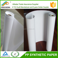Advertising Material Offset Printing PP Synthetic Paper