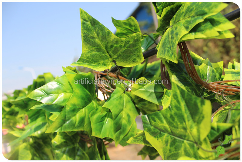 Small Plastic Spathiphyllum Potted Shrubs Of Gloss Leaf