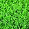 Natural green artificial football turf indoor